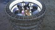 Pohled do vnitřku vysunutých transportních kruhů