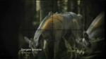 Trailer a ukázka z epizody SGU 2x16 - The Hunt (CZ)